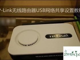 TP-Link无线路由器设置USB网络共享的方法